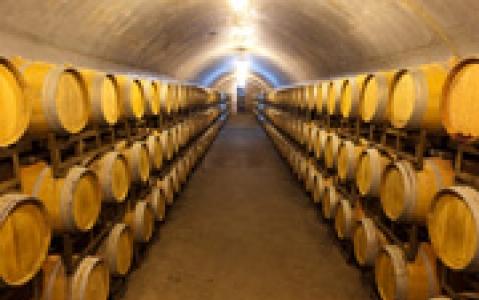 activity Visite d'une cave à vin (Pékin)