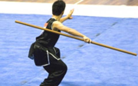 activity Visite d'une école de Kung Fu (Pékin)