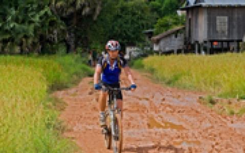 activity Vélo Ubud