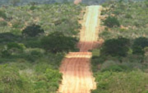 activity Entrée au Parc National du Cap de Bonne Espérance