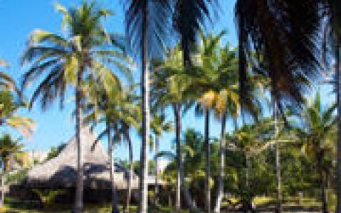 activity Excursion sur l'île de Baru