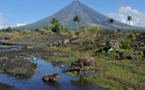 activity Balade sur les flancs du Mont Pinatubo