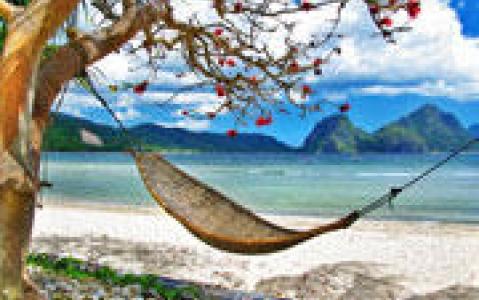 activity Excursion sur l'île de Balicasag