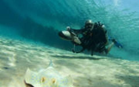 activity Aquabike