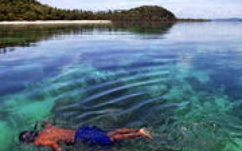 activity Baptême de plongée sous-marine dans le lagon Rangiroa