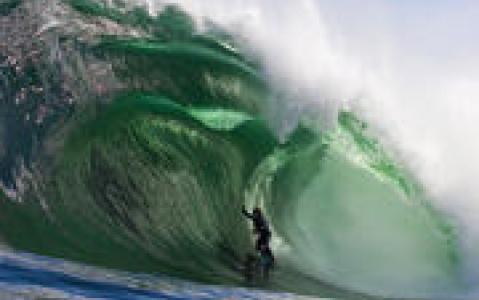 activity Initiation au Surf & Bodyboard