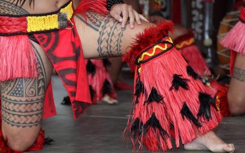 activity Visite guidée et dîner spectacle au Tiki Village