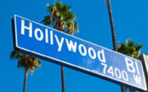 activity Hollywood