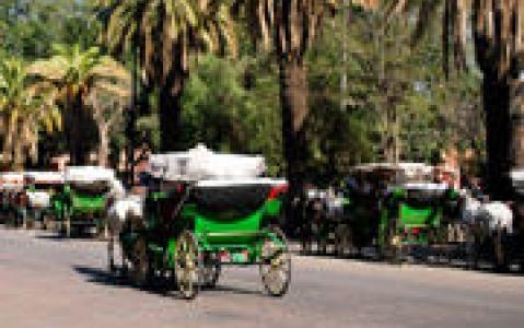 activity Balade en calèche dans la vieille ville d'Ava