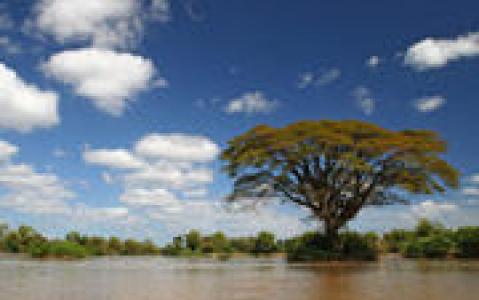 activity Croisière sur le Mékong dans l'Isaan