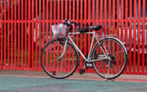 activity Vélo à Chiang Mai