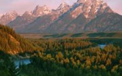activity Le Parc National Grand Teton