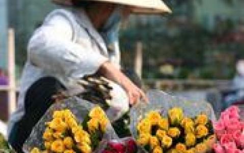 activity Marché de fleurs de Hanoï