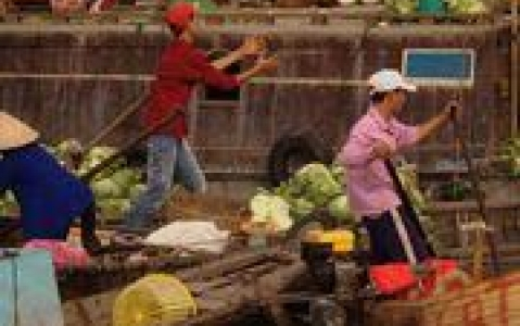 activity Marché flottant de Cai Rang