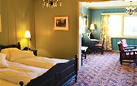 hotel Hôtel Fefor Høyfjellshotel - Vinstra