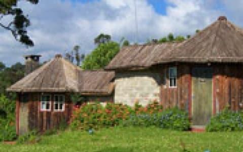 hotel Castle Forest Lodge - Mont Kenya