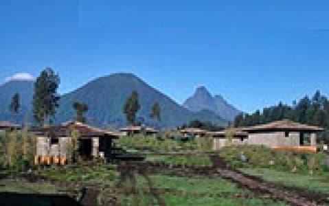 hotel Mountain Gorilla View Lodge - Parc des volcans