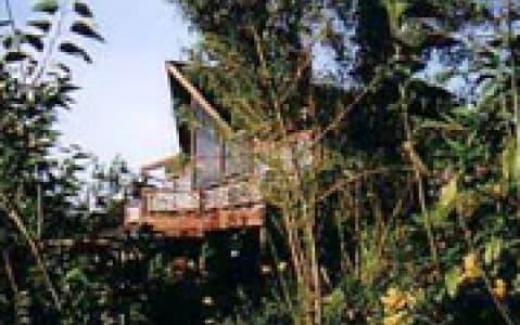 hotel Kinabalu Lodge - Parc de Kinabalu