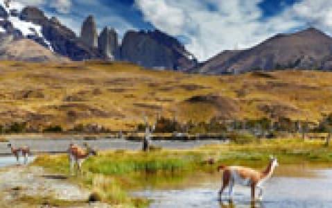 hotel Refuge Los Cuernos - Torres del Paine