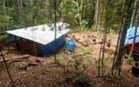 hotel Lobah Camp - Bassin de Maliau