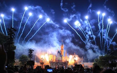 activity Une journée à Disneyland Tokyo