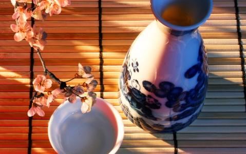 activity Dégustation de saké à Takayama
