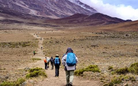 activity Ascension du Kilimandjaro