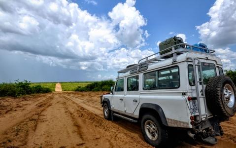 activity Safari botswana Chobe en 4x4 et en bateau !