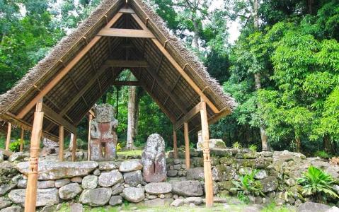 activity Vallée de Puamau & site de Iipona - Journée complète, déjeuner inclus