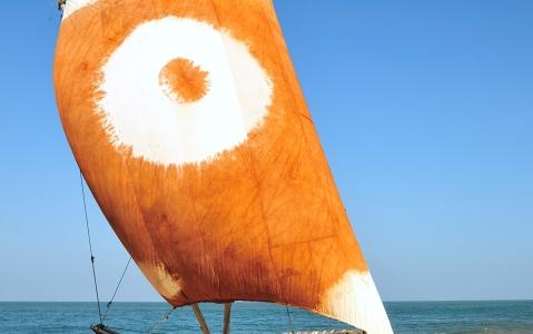 activity Sortie en catamaran