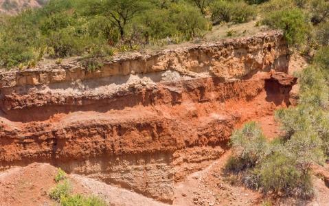 activity Marche dans les Gorges d'Olduvai