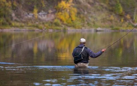 activity Demi-journée de Pêche à la Mouche