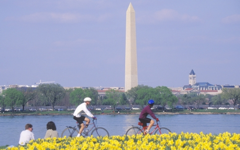 activity Visite de Washington en vélo