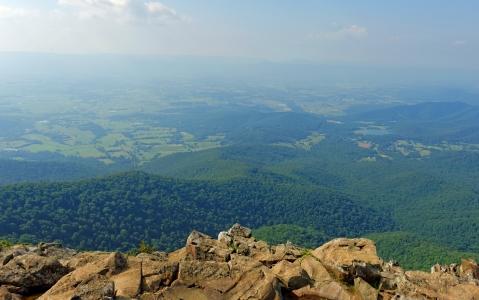 activity Visite du Parc National de Shenandoah