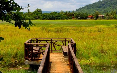 activity Le site naturel de Veal Ta Prak