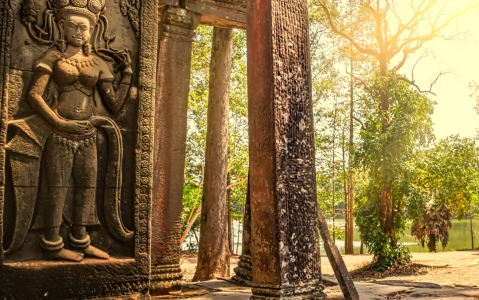 activity Angkor Vat
