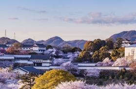 Circuit Japon