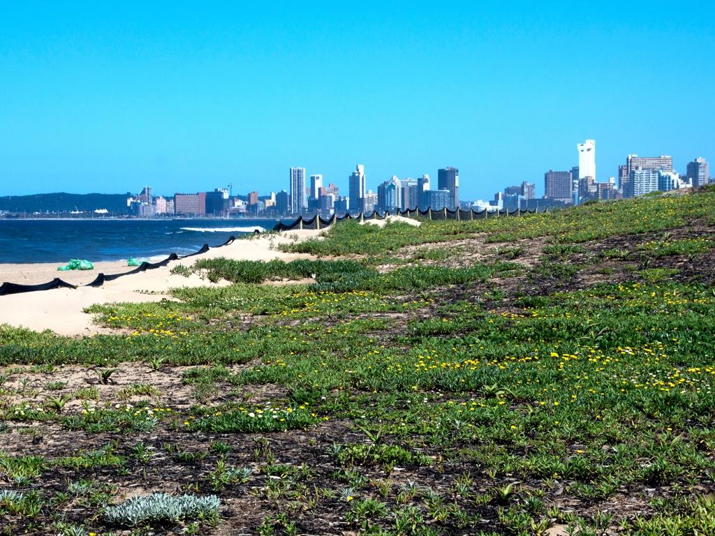 Route pour Port Elizabeth et vol en fin de journée pour Durban