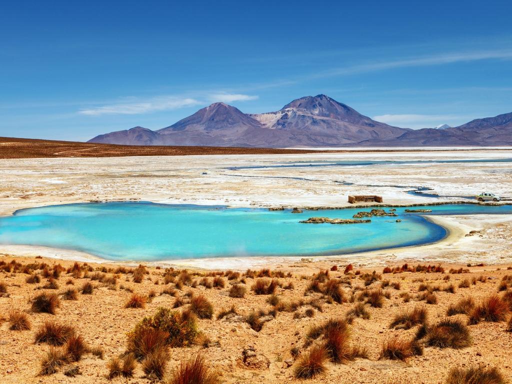 Le parc national de las Vicunas