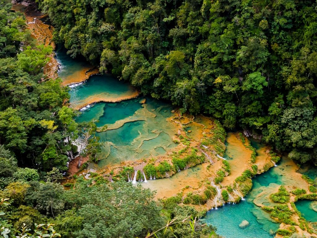 Les piscines naturelles de Semuc Champey