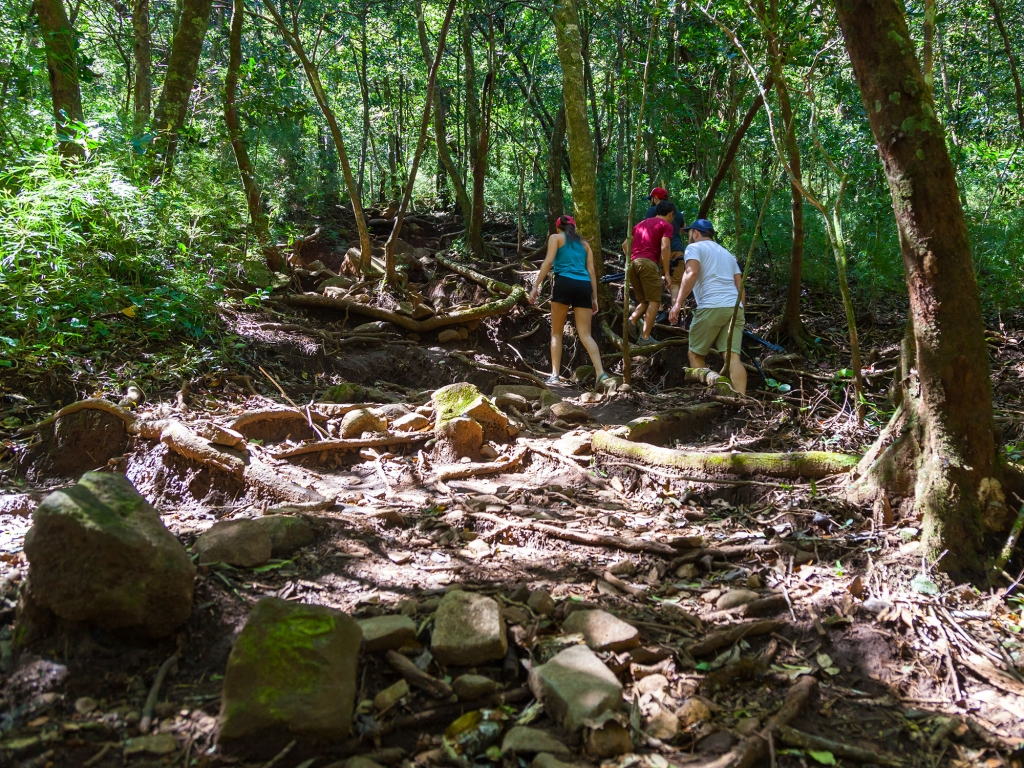 Stupéfiant Parc National Rincon de la Vieja