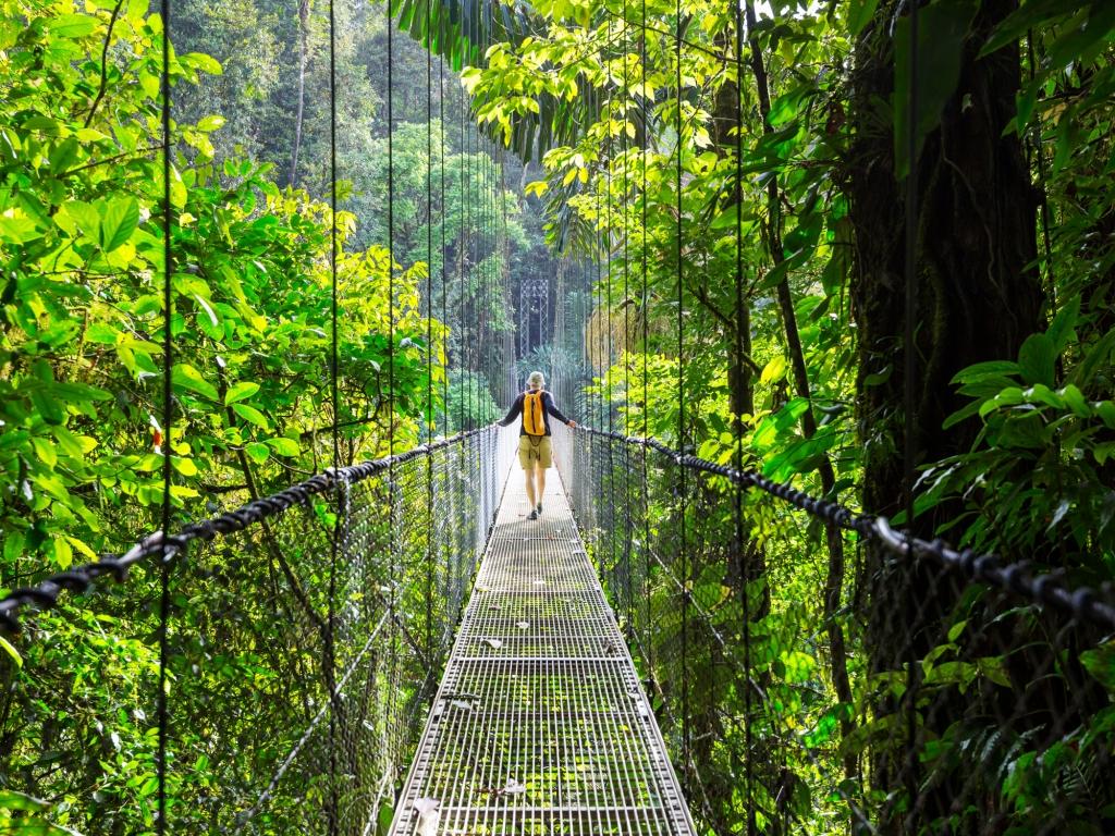 Imposant volcan et ponts suspendus