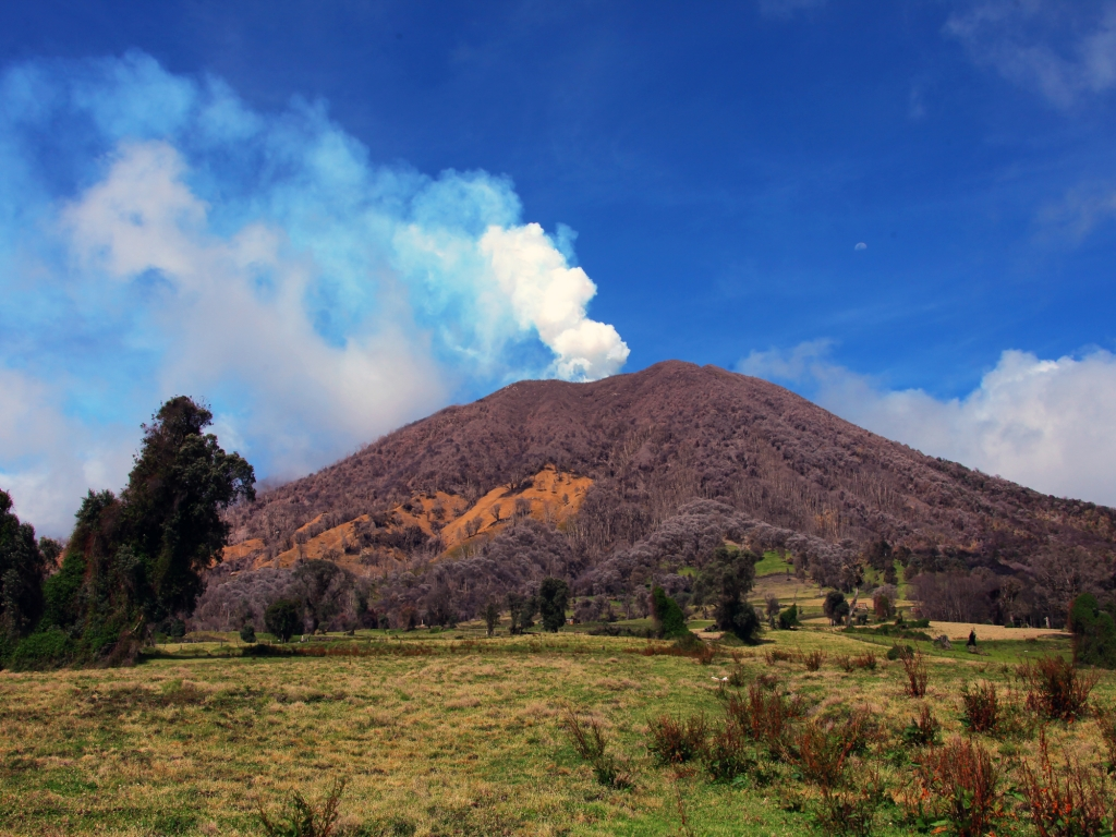 Volcan, nature et sensations fortes