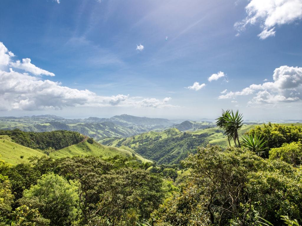 Monteverde et sa forêt de nuages