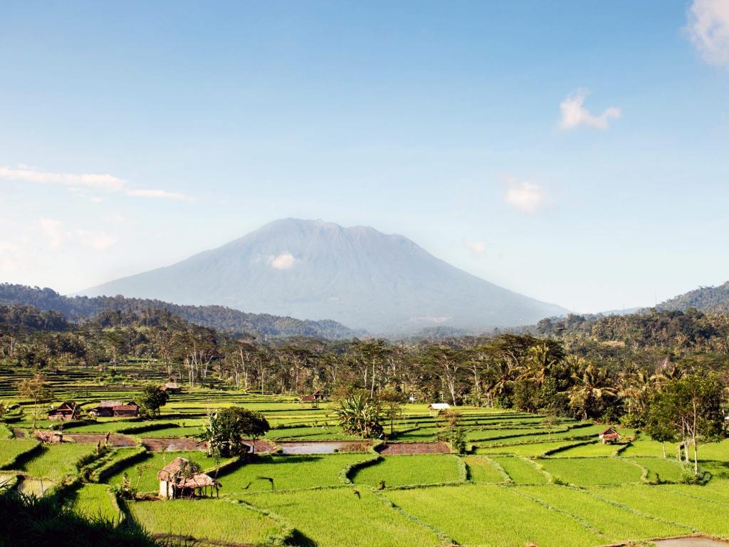 Vallées luxuriantes de Bali