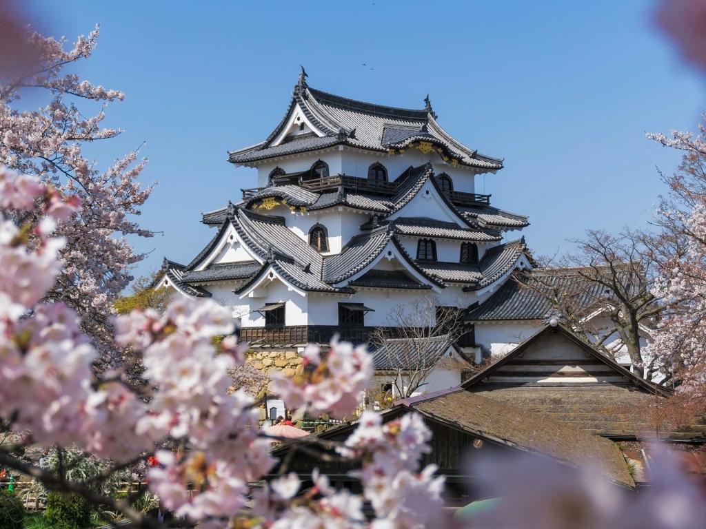 Les joyaux historiques aux alentours de Kyoto