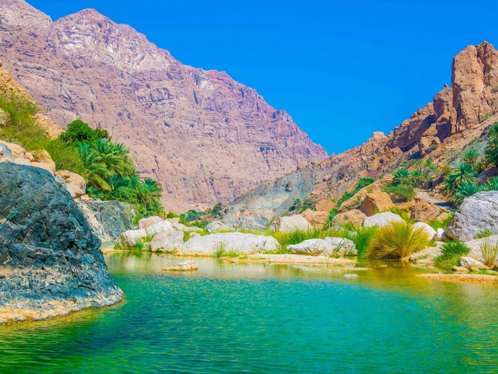 Exploration des paysages omanais