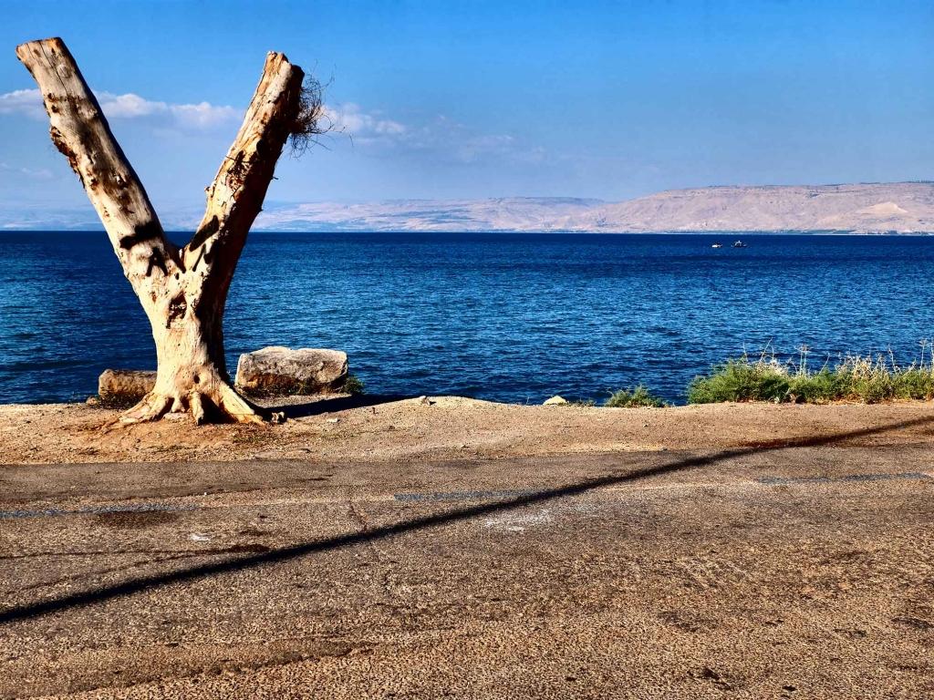 Immersion en Galilée