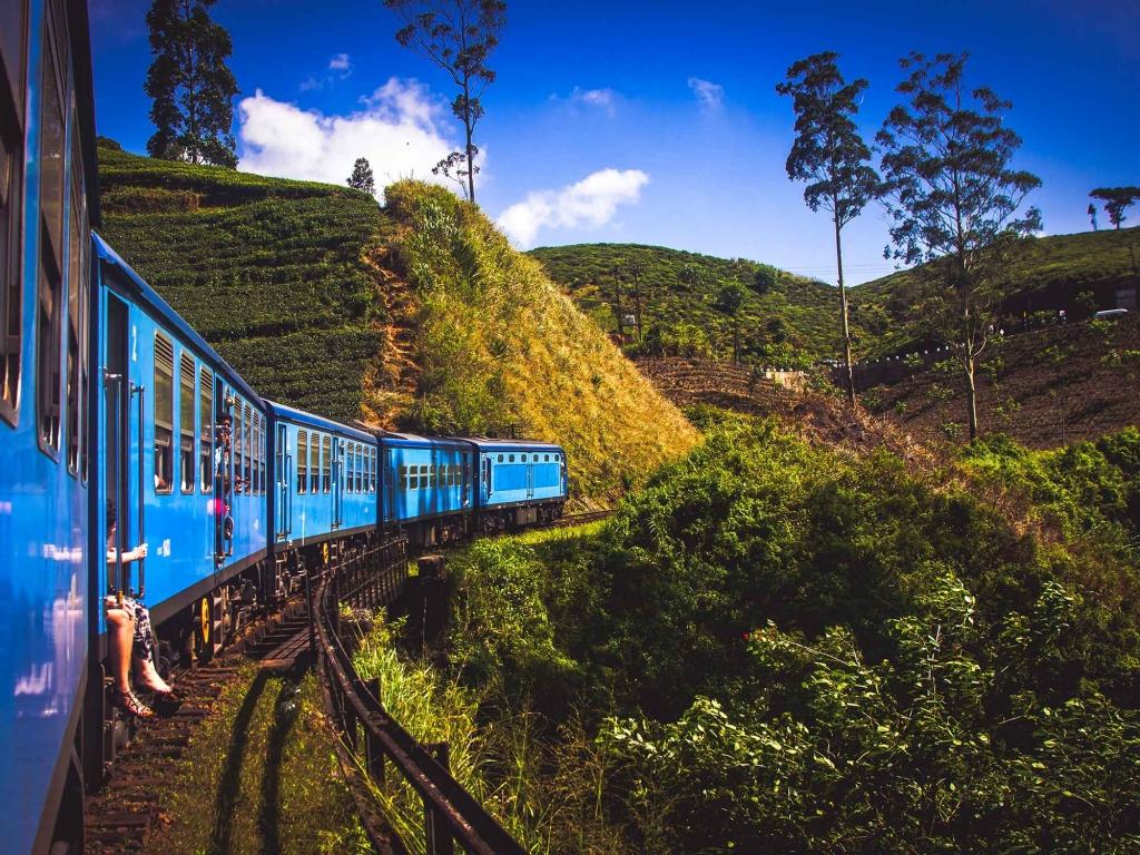 Traverser les plantations de thé en train