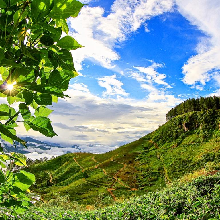 Journée 100% nature dans les Knuckles Range